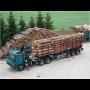Dřevěné palety, bedny i jiné dřevěné obaly od českého výrobce