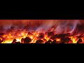 Dřevěné brikety, uhlí a další palivo za víc než skvělé ceny