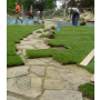 Realizace zahrad a parků, Staré Město