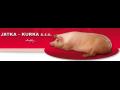 Čerstvé vepřové maso nejvyšší kvality od JATKA-KURKA na Opavsku