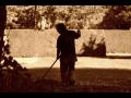 �dr�ba zelen� od k�cen� strom�, p�es v�sadbu a� po hnojen�