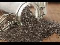 Chia semínka pomáhají nejen při hubnutí