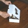 Pap�rov� obaly a krabice umo�n� bezpe�nou manipulaci potravin a zajist� jejich �erstv� vzhled
