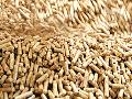 Výroba pelet Znojmo – dřevěné pelety pro soukromníky i velké firmy