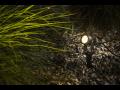 LED osvětlení - šetrný i designový zdroj světla