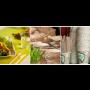 Kompostovatelné jednorázové nádobí výrazně šetří životní prostředí