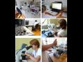 Testování chemických látek a registrace podle nařízení REACH