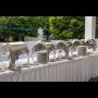 Půjčovna gastro zařízení pro svatby, oslavy, rauty a akce různého zaměření