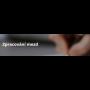 Zpracování mezd od Premisoft: Kompletní mzdové účetnictví spolehlivě a ...