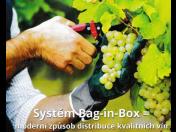 Nejlepším řešením pro vinaře a vinotéky je nejnovější obal Bag in box na 20 litrů, který vyhovuje aktuálním zákonným podmínkám