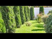 Údržba zeleně po celé Praze - jedině od Zahradnictví Král