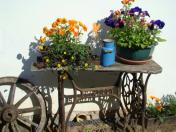 Ubytování jako u babičky: Česká Kanada nabízí návštěvníkům jen to nejlepší