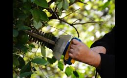 Profesionální péče o zeleň a zahradu