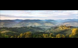 Foresta SG, a.s.: dotace pro vlastníky lesa