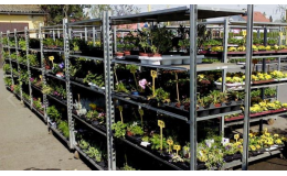Zahradnictví GARDEN CENTRUM - RAIDA