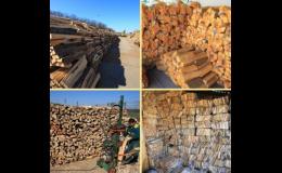 palivové a krbové dřevo, PRODEX, spol. s r.o.