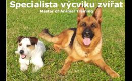 profesní vzdělávání v oblasti výcviku zvířat