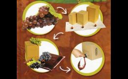 Produzione dei imballaggi di carta - Model Pack Shop