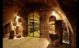 VINAŘSTVÍ LEDNICE ANNOVINO - degustace vína