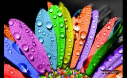 Tónování a míchání barev na počkání