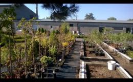 GARDEN CENTRUM RAIDA - vše pro vaši zahradu, od květin přes stromy až po zahradnické potřeby.