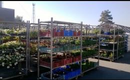 Široký výběr stromů, keřů a květin