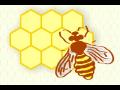 Výrobna mezistěn a včelařských potřeb, s.r.o.