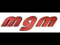 Pálící stroje, svařovací agregáty MGM, spol. s r.o.