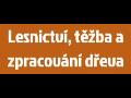 Těžba a zpracování dřeva - Jan Sečkař