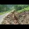 ELEKTROVASURY  - montáž elektrických zařízení a zemní práce