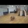 Podlahy pro každou místnost vyberete u Boma Parket v Praze