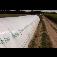 JUTA a.s. - geotextilie, fólie, agrotextilie a tkaniny