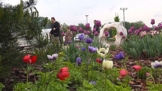 HORTISCENTRUM s.r.o. - zahradnické centrum