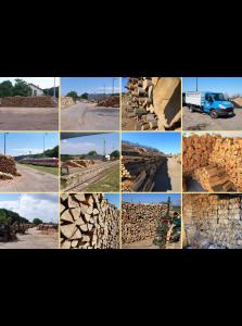 Výroba, prodej palivového dřeva