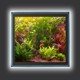 Sv�teln� obrazy, LED r�my, Crystal Picture, OK DESIGN, s.r.o.