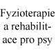 Fyzioterapie a rehabilitace pro psy, Veterin�rn� klinika Kleisslova Pohotovost pro zv��ata Plze�