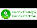 Květiny Prostějov - Květiny Ptáčková s.r.o.