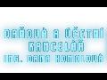 Ing. Dana Homolová - daňová a účetní kancelář