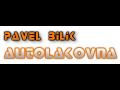 Autolakovna Zlin - Pavel Bilik www.autolakovna-zlin.cz