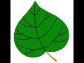 Základní škola a mateřská škola Střítež nad Ludinou, příspěvková organizace